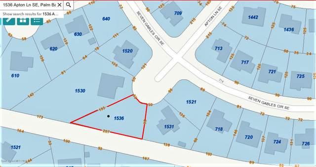 1536 Apton Lane SE, Palm Bay, FL 32909 (MLS #890755) :: Armel Real Estate