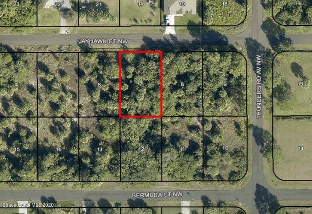 1850 Jayhawk Court NW, Palm Bay, FL 32907 (MLS #890855) :: Coldwell Banker Realty