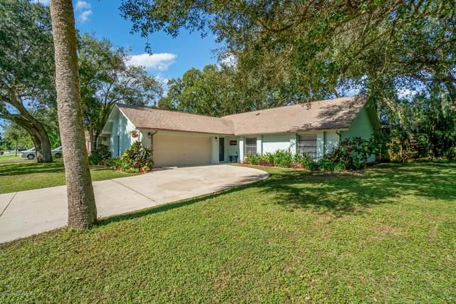697 Narragansett Street NE, Palm Bay, FL 32907 (MLS #891069) :: Coldwell Banker Realty