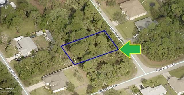 2690 Palmer Avenue SE, Palm Bay, FL 32909 (MLS #891131) :: Premium Properties Real Estate Services