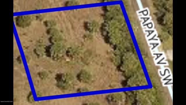 3126 Papaya Avenue SW, Palm Bay, FL 32908 (MLS #891206) :: Premium Properties Real Estate Services