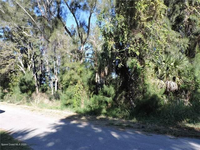 3740 Palm Avenue, Micco, FL 32976 (MLS #891566) :: Premium Properties Real Estate Services