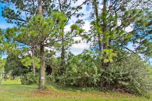0000 Emerald Road SE, Palm Bay, FL 32909 (MLS #891593) :: Engel & Voelkers Melbourne Central