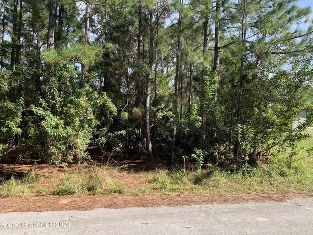 2653 Raven Avenue SE, Palm Bay, FL 32909 (MLS #892112) :: Premier Home Experts