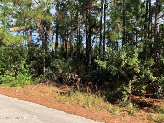 2647 Raven Avenue SE, Palm Bay, FL 32909 (MLS #892117) :: Premier Home Experts