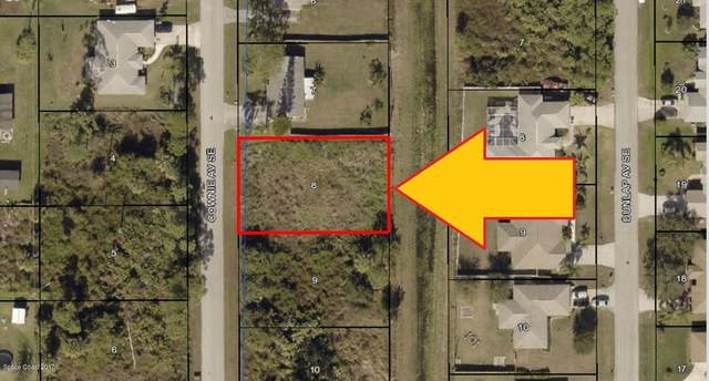 315 Cownie Avenue SE, Palm Bay, FL 32909 (MLS #892402) :: Armel Real Estate