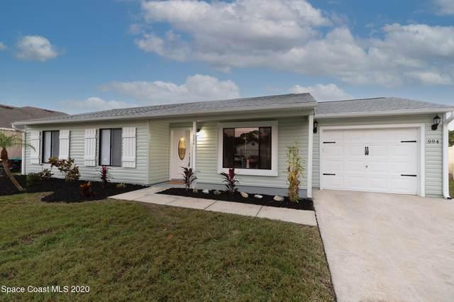 994 Dusseldorf Avenue NW, Palm Bay, FL 32907 (MLS #892832) :: Blue Marlin Real Estate