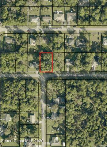 1149 Benedictine Street NW, Palm Bay, FL 32907 (MLS #892876) :: Premier Home Experts