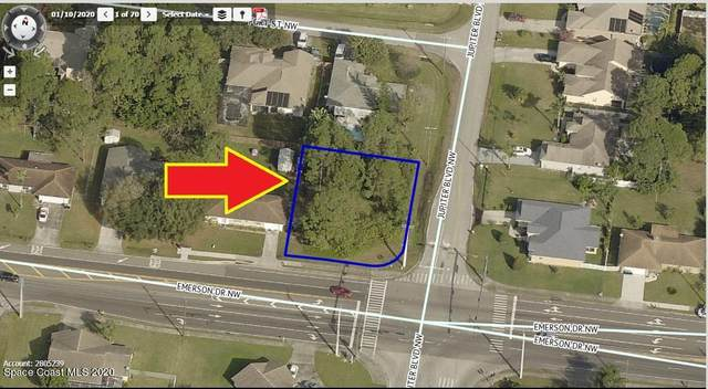 231 Emerson Drive NW, Palm Bay, FL 32907 (MLS #893016) :: Premier Home Experts