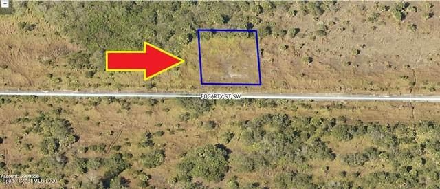 1573 Fogarty Street SW, Palm Bay, FL 32908 (MLS #893083) :: Premier Home Experts