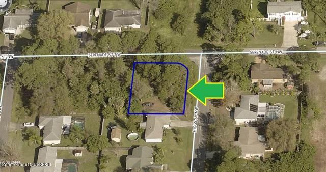 1246 Corner Lot On Serenade Street NW, Palm Bay, FL 32907 (MLS #893120) :: Premium Properties Real Estate Services