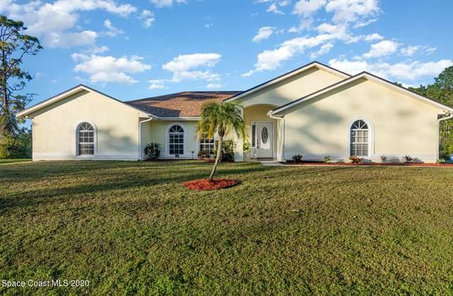 1643 Agnes Avenue SE, Palm Bay, FL 32909 (MLS #893247) :: Blue Marlin Real Estate