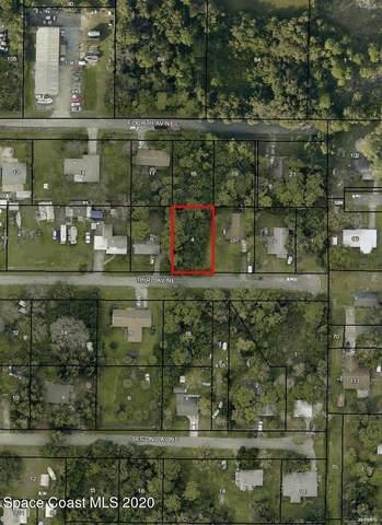 2667 Third Avenue NE, Palm Bay, FL 32905 (MLS #893772) :: Premium Properties Real Estate Services