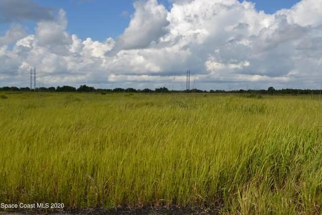2240 Ceylon Way SW, Palm Bay, FL 32908 (MLS #893811) :: Premier Home Experts