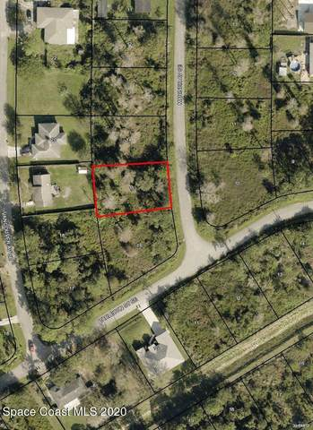 1394 Mariner Avenue SE, Palm Bay, FL 32909 (MLS #893990) :: Premier Home Experts