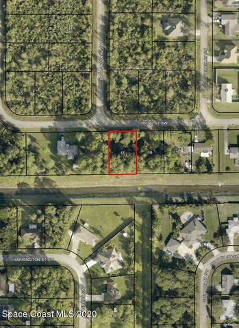 266 Tindal Street SW, Palm Bay, FL 32908 (MLS #894071) :: Premier Home Experts