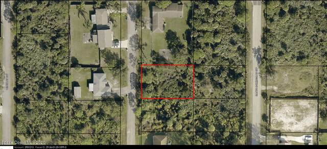 527 Tasco Avenue SW, Palm Bay, FL 32908 (MLS #894273) :: Blue Marlin Real Estate