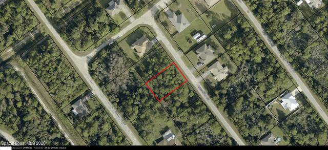 2712 Wright Avenue SE, Palm Bay, FL 32909 (MLS #894275) :: Blue Marlin Real Estate