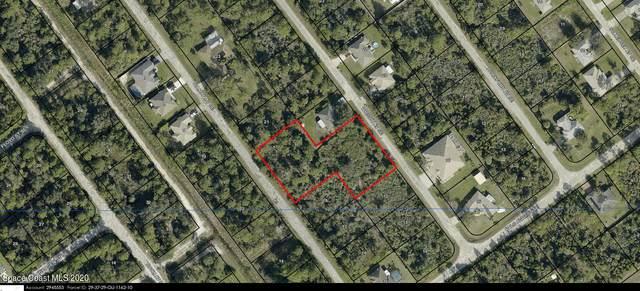 2766 Wright Avenue SE, Palm Bay, FL 32909 (MLS #894276) :: Blue Marlin Real Estate