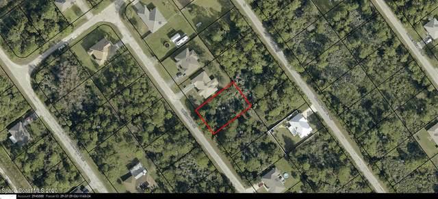 2727 Wright Avenue SE, Palm Bay, FL 32909 (MLS #894278) :: Blue Marlin Real Estate