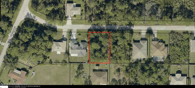 1556 Welland Street SE, Palm Bay, FL 32909 (MLS #894290) :: Premier Home Experts