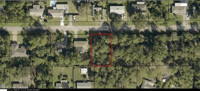 460 Wellwood Street SW, Palm Bay, FL 32908 (MLS #894337) :: Blue Marlin Real Estate