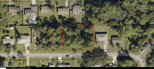 147 Whirl Street SW, Palm Bay, FL 32908 (MLS #894342) :: Blue Marlin Real Estate
