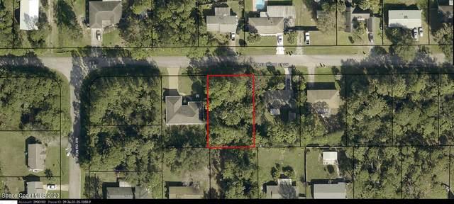 486 Wellwood Street SW, Palm Bay, FL 32908 (MLS #894343) :: Blue Marlin Real Estate