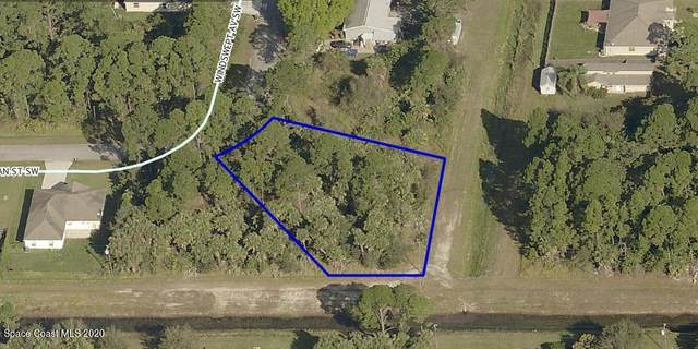 599 Windswept Avenue SW, Palm Bay, FL 32908 (MLS #894353) :: Premier Home Experts