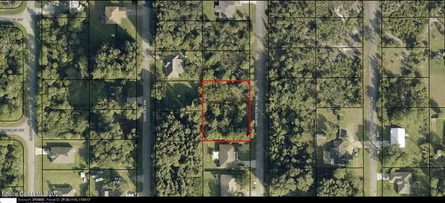 768 Haryestor Avenue SW, Palm Bay, FL 32908 (MLS #894374) :: Blue Marlin Real Estate