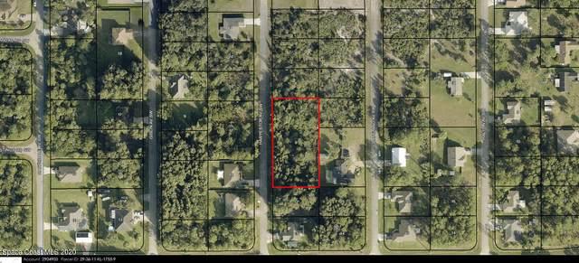 761 Haryestor Avenue SW, Palm Bay, FL 32908 (MLS #894378) :: Blue Marlin Real Estate