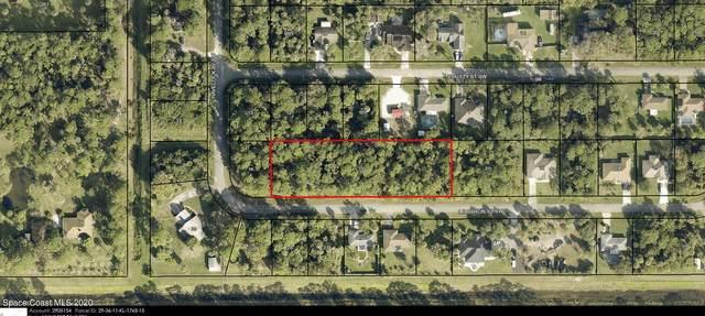 987 Le Baron Street SW, Palm Bay, FL 32908 (MLS #894382) :: Blue Marlin Real Estate