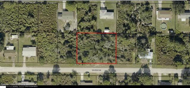 1641 Waltz Street SE, Palm Bay, FL 32909 (MLS #894390) :: Premier Home Experts