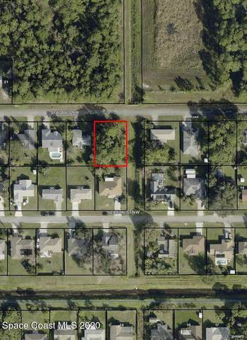 1247 Stadt Road NW, Palm Bay, FL 32907 (MLS #894408) :: Blue Marlin Real Estate