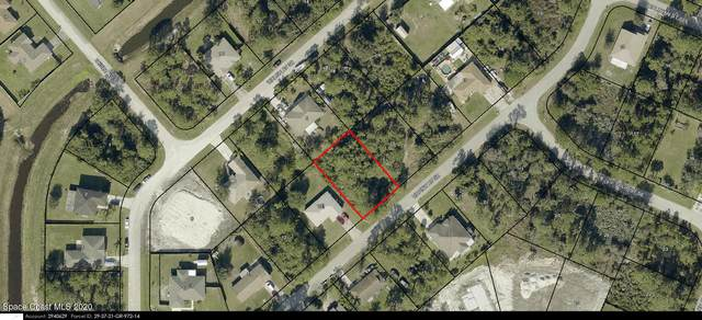 1247 Tiffiny Avenue SE, Palm Bay, FL 32909 (MLS #894519) :: Blue Marlin Real Estate