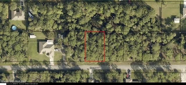 791 Micco Street SW, Palm Bay, FL 32908 (MLS #894629) :: Premium Properties Real Estate Services