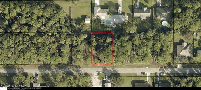 759 Micco Street SW, Palm Bay, FL 32908 (MLS #894630) :: Premium Properties Real Estate Services