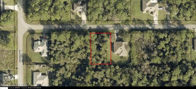 856 Micco Street SW, Palm Bay, FL 32908 (MLS #894632) :: Premium Properties Real Estate Services