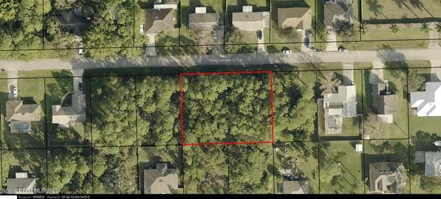 338 Dandurand Street SW, Palm Bay, FL 32908 (MLS #894633) :: Premium Properties Real Estate Services