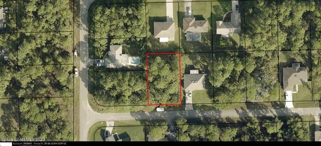 387 Mott Street SW, Palm Bay, FL 32908 (MLS #894634) :: Premium Properties Real Estate Services