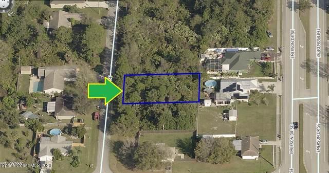 427 Inlet Avenue SE, Palm Bay, FL 32909 (MLS #894844) :: Premier Home Experts