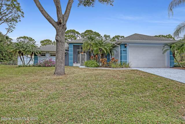 911 Salina Street SE, Palm Bay, FL 32909 (MLS #895328) :: Premium Properties Real Estate Services