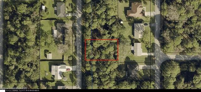 1155 Yakutat Avenue SE, Palm Bay, FL 32909 (MLS #895428) :: Dalton Wade Real Estate Group