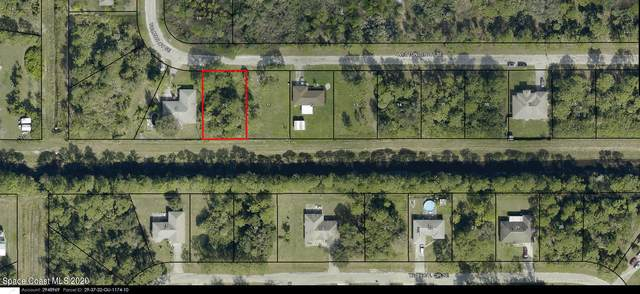 920 Westunder Street SE, Palm Bay, FL 32909 (MLS #895429) :: Dalton Wade Real Estate Group