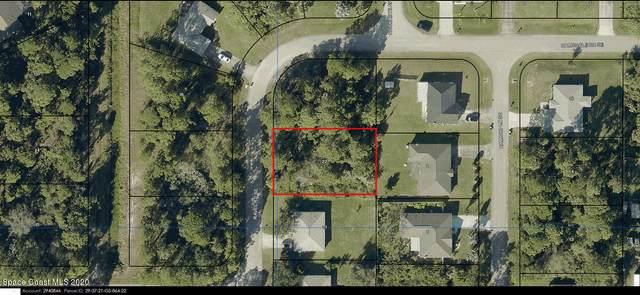 2261 Ravel Road SE, Palm Bay, FL 32909 (MLS #895430) :: Dalton Wade Real Estate Group