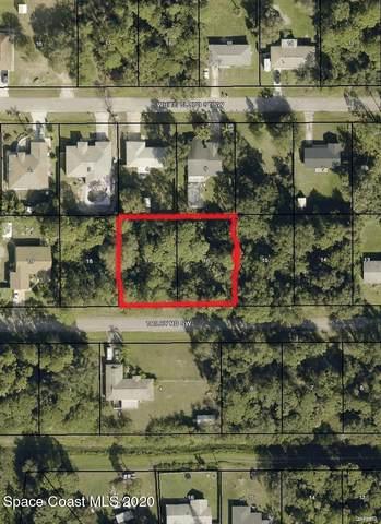 347&337 Trilby (Double Lot) Road SW, Palm Bay, FL 32908 (MLS #895435) :: Dalton Wade Real Estate Group