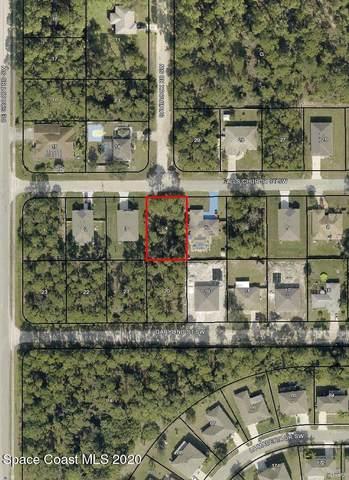 270 Falls Church Street SW, Palm Bay, FL 32908 (MLS #895436) :: Dalton Wade Real Estate Group