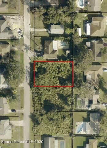 561 California Avenue NE, Palm Bay, FL 32907 (MLS #895440) :: Dalton Wade Real Estate Group