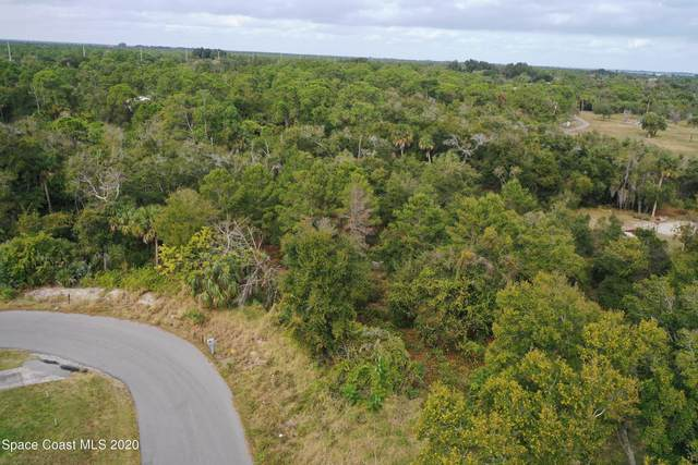 0 Lakeview Drive, Micco, FL 32976 (MLS #895526) :: Blue Marlin Real Estate