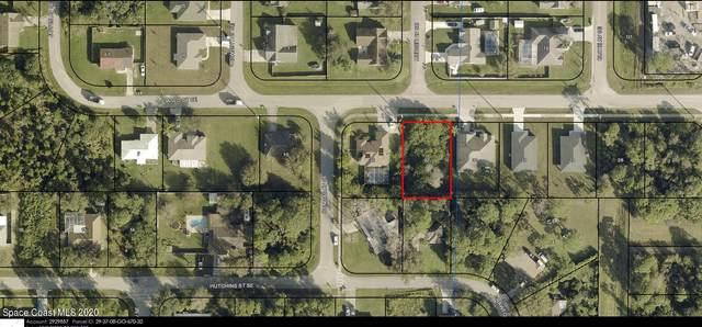 1158 Jaslo Street SE, Palm Bay, FL 32909 (MLS #895829) :: Armel Real Estate
